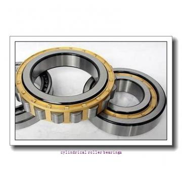 400 mm x 500 mm x 100 mm  NSK RS-4880E4 cylindrical roller bearings