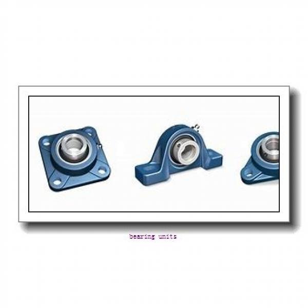 INA PSFT35 bearing units #1 image