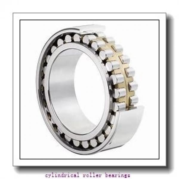 75 mm x 130 mm x 25 mm  FBJ NUP215 cylindrical roller bearings #2 image