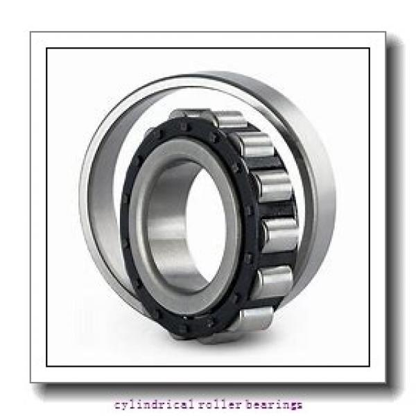 17 mm x 40 mm x 12 mm  NACHI NP 203 cylindrical roller bearings #1 image
